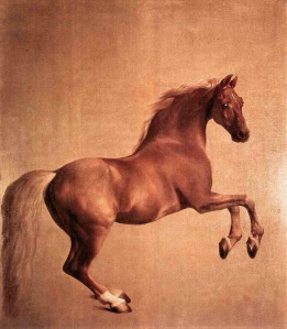 Whistlejacket | George Stubbs | 1762