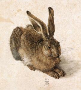Hare | Albrecht Dürer | 1502